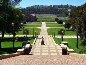 加州洛杉矶分校 University of California, Los Angeles