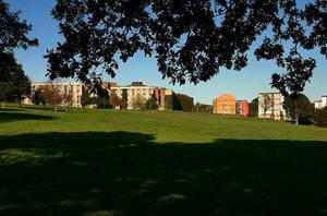 肯特大学 University of Kent