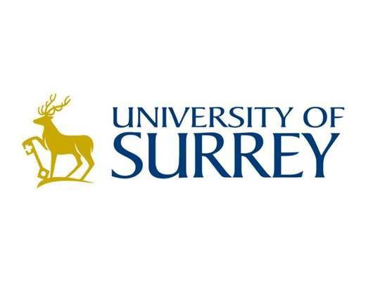 萨里大学 University of Surrey